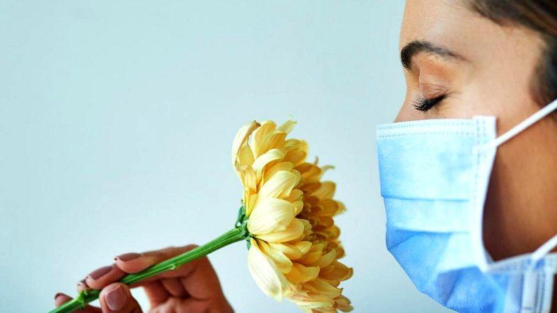 Шесть мифов (а также вполне правдивых вещей) о сенной лихорадке - BBC News  Русская служба